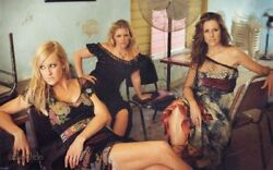 The Dixie Chicks Poster Hollywood Celebrity Poster Print [24 X 36 Inch- 1