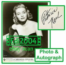 Patricia Neal Vintage Original Photo Sexy The Breaking Point Autograph Card