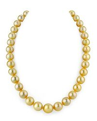 14K Gold 10-12mm Golden South Sea Cultured Pearl Necklace - AAA Quality