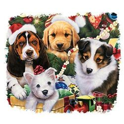 Christmas Puppies   Tshirt    SizesColors $13.95