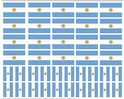 40 Removable Stickers: Argentina Flag Argentinian Party Favors Decals