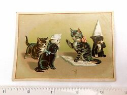 1870's-80's Anthropomorphic Kittens Cats Dunce, A. J. Fouch Chromo Printers F29