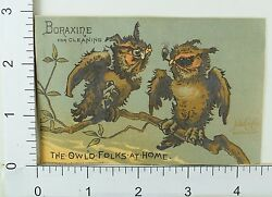 Boraxine Anthropomorphic Owl'd Folks At Home Old Owl Couple Arguing F65