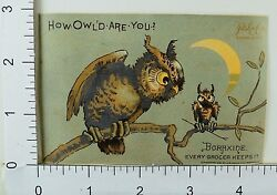 Boraxine Anthropomorphic Owls Night Crescent Moon Adult And Baby Owl F65