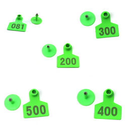 Green 001-500 Number Plastic Livestock Ear Tag Animal Tag For Goat Sheep Pig