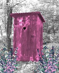 Pink And Gray Home Decor Wall Art Photo Print Vintage Outhouse Bathroom Picture