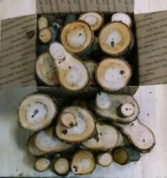 Hickory Wood Chunks/slices For Bbq/grilling/wood Smoking