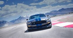 2017 Ford Mustang Shelby Gt350 Mountains Poster 24 X 36 Inch Looks Awesome