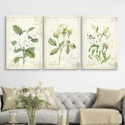 Wall26 - 3 Panel Vintage Style White Flowers Gallery - Cvs - 24x36 X 3 Panels
