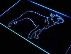 Lite Signs™ Boston Terrier Sign (LED Performance Neon Color)