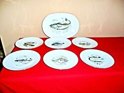 Neiman Marcus 6 Fish Dinner Plates And Platter - West Germany - Gold Rim