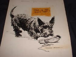 Signed Advertising Illustration Drawing by Morgan Dennis Scottish Terrier Dog #2