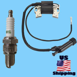 Cat Ignition Coil And Plug For Rp5500 490-6489 502-3686 5500 6875 Gas Generator