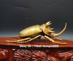 17 Cm Chinese Copper Gold Lifelike Animal Insect Dung Beetle Beatles Small Box
