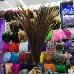 Rare 10-100pcs Natural Color Golden Pheasant Tail Feathers 20-30 Inches/50-75 Cm