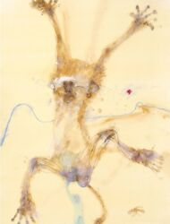 John Olsen And039monkey Iiand039 Limited Edition Print Hand Signed With Coa. Collectable