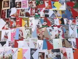 Mixed Lot of 150 Greeting Cards w White Dogs Terrier Unused Holidays