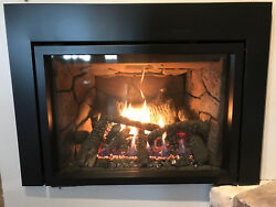 Renegade Direct Vent Gas Fireplace Insert Truflame 35 Dual Flame Control Empire