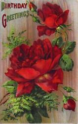 Happy Birthday Rose Flowers And Buds Vintage Postcard 1910s Serie 5100 Germany