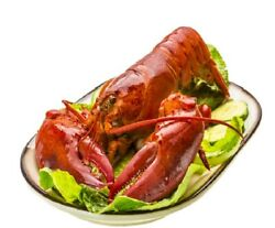 4 2-3 Lb Fresh Steamed Whole Maine Lobsters