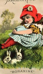 Lot Of 6 1880's Lovely Boraxine Victorian Trade Card Set P82