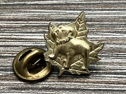 Canadian Bulldog Pin Badge Mack on Collar