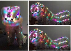 Lion Dance Mascot Costume Led Light Wool Southern for Two Adult Chinese Folk Art