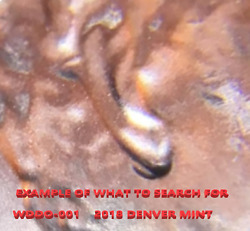 2018 D Lincoln Shield Cents Fresh From Bank 50 Coins Wddo-001