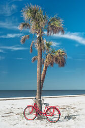 Florida White Sand Beach 24x36 Photo Picture Canvas Art Palm Tree Red Bicycle
