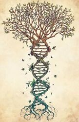 "3"" Biology DNA Science Genetics Family Tree Genome Heritage Cool Sticker"