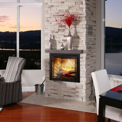 Dimplex Rbf42 Revillusion Electric Fireplace Realistic W/ Double Glass Door