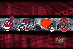Ohio Sports 12x18in Poster Cleveland Ohio Cavaliers Browns Indians Osu Free Ship