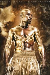 Floyd Money Mayweather Boxer Art Wall Indoor Room Outdoor Poster POSTER 24x36