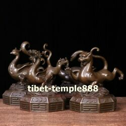 China Pure Bronze Myth Four Mythical Beast Dragon Tiger Tortoise Snake Sculpture