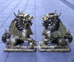 41 Cm Chinese Pure Brass Copper Foo Dog Lion Kylin Dragon Fengshui Animal Statue