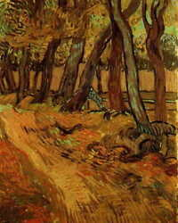 06975 Van Gogh The Garden Of Saint-paul Hospital With Figure Laminated Poster Ca