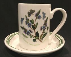 Portmeirion Veronica Chamaedrys - Speedwell Breakfast Cup And Saucer 1972
