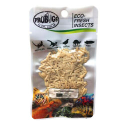 PROBUGS vacuum sealed RICE WORM feeder insects for bearded dragons reptiles l...