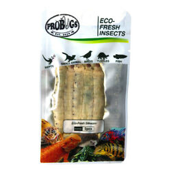 PROBUGS vacuum sealed SILKWORM feeder insects for bearded dragons reptiles li...