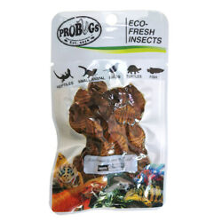 PROBUGS vacuum sealed SILKWORM PUPAE feeder insects for bearded dragons repti...