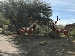 Deer Buck Facing Left and Facing Right Aluminum Outdoor Statues
