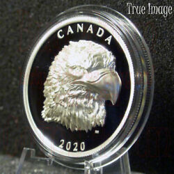 2020 Proud Bald Eagle - 25 Ehr Extra High Relief Head Proof Silver Coin Canada