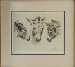 William Robinson Leigh Etching Donkeys United States 1866 - 1955 15h 17and039w