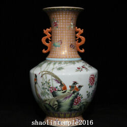 China Qing Dynasty Pastel Bamboo Stone Flower And Bird Pattern Binaural Bottle