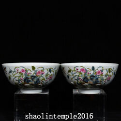 A Pair Exquisite China Qing Dynasty Pastel Reed Wild Goose Pattern Bowl