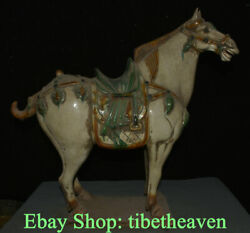 20.8 Old China Tang Sancai Pottery Dynasty White War Horse Steed Luck Statue
