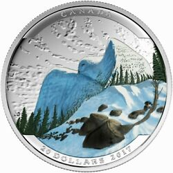 2017 Canada 20 Dollars 9999 Silver Coin Landscape Illusion Snowy Owl Color