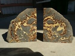 Two Vintage Septarian Matching Dragon Stone/teeth Nodule Bookends Geode Decor