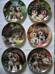 6 Franklin Mint Larry Grant Beagle Puppies Limited Edition Collector Plates