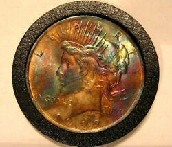 1923 Peace Dollar Toned And Uncirculated  Great Gift
